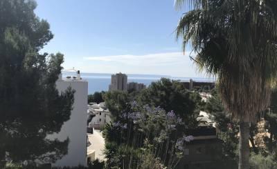Rental Apartment Cas Català