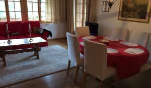 Rental Apartment Saanen