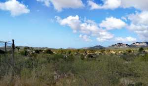 Sale Building land Calvià