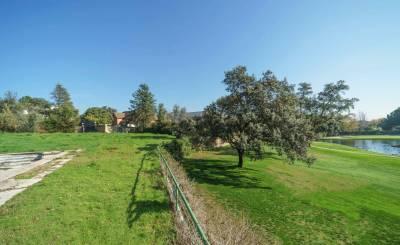 Sale Building land Moraleja