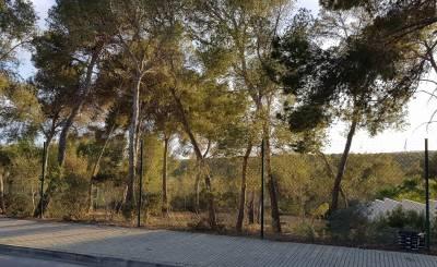 Sale Plot of land Cala Vinyes