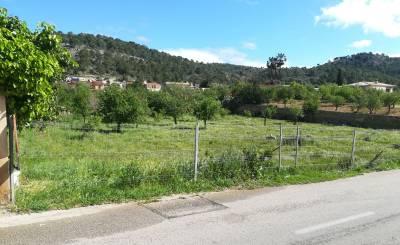 Sale Plot of land Calvià