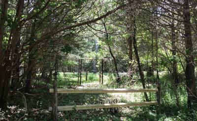 Sale Plot of land East Hampton