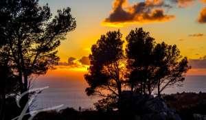Sale Plot of land Es Camp de Mar