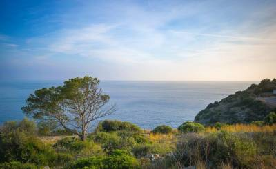 Sale Plot of land Port d'Andratx