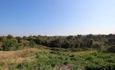 Sale Plot of land Roquefort-les-Pins