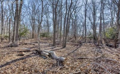 Sale Plot of land Southold