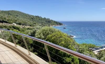 Sale Property Ile du Levant