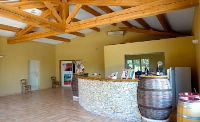 Sale Vineyard property Rochefort-du-Gard
