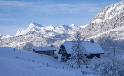 Seasonal rental Chalet Praz-sur-Arly
