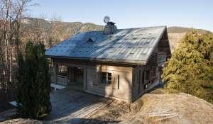 Seasonal rental Chalet ROCHEBRUNE