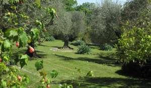 Seasonal rental Villa Châteauneuf-Grasse